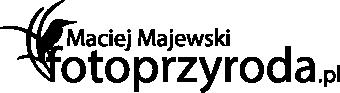 Maciej Majewski Fotoprzyroda.pl